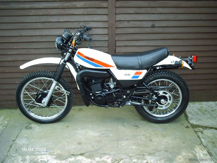 1981 DT 250