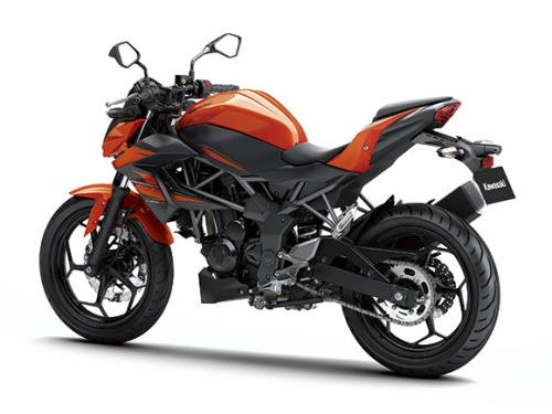 Z Orange6