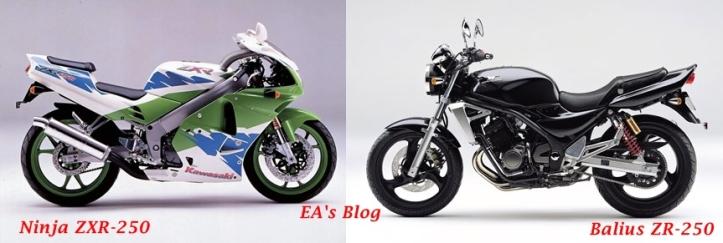 ZXR vs ZR 2