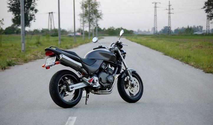 Hornet10
