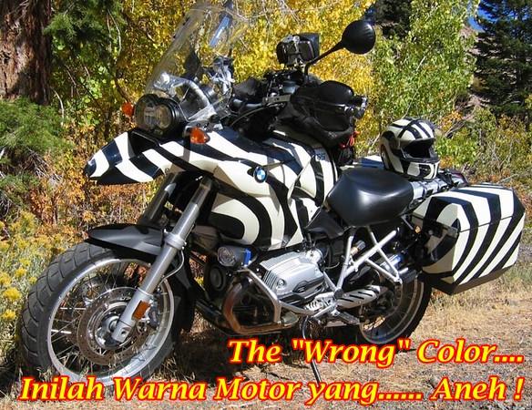 BMW R1200GS Zebra