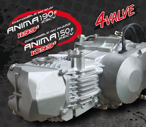 Daytona Anima 150 & 190