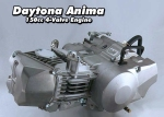 Daytona Anima 150