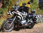 wpid-bmw-r1200gs-zebra.jpg.jpeg