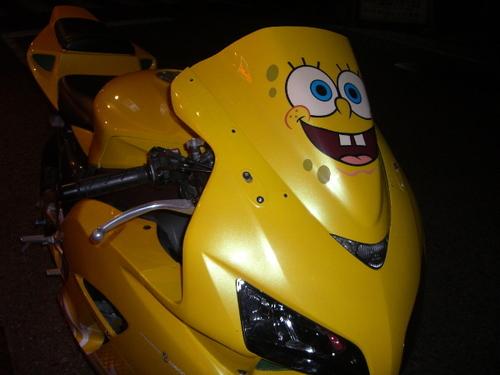 wpid-cbr-fireblade-spongebob.jpg.jpeg