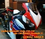 ZXR250 Custom CBR1000RR Main