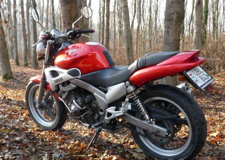 Yamaha FZX250 Zeal 11