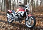 Yamaha FZX250 Zeal 14