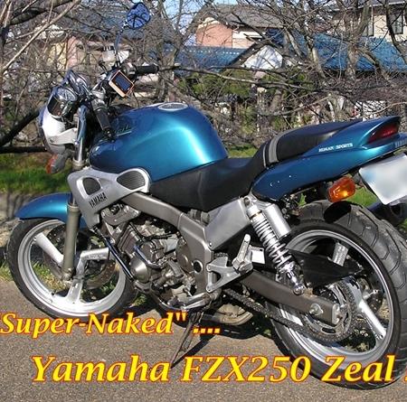 Suzuki GSX-S 250 Cobra 3 - EAs Blog | ENOANDERSON.COM