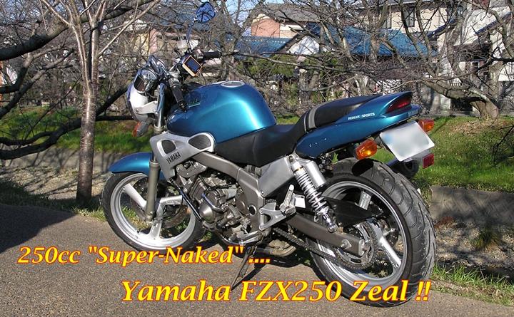 Yamaha FZX250 Zeal Main