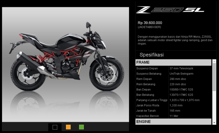 Ninja R-SS & Z250SL 5