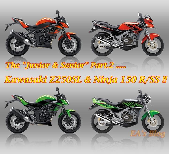 Ninja R-SS & Z250SL