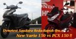 Vario 150 vs PCX 150