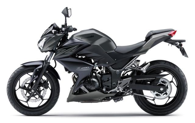 Kawasaki Z250 2015 Hitam 2