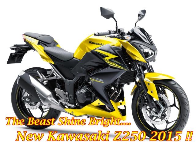 Kawasaki Z250 2015 Main