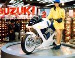 Suzuki Falcorustyco 4