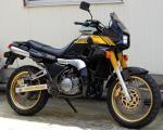 Yamaha TDR250 14