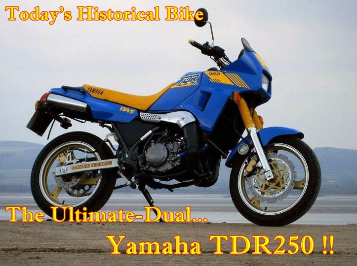 Yamaha TDR250 Main
