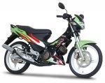 Kawasaki Leo Star