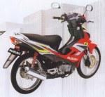 Suzuki Arashi 4