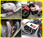 Yamaha FZ400R Rongsokan 8