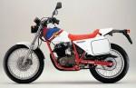 Honda FTR250 Tracker