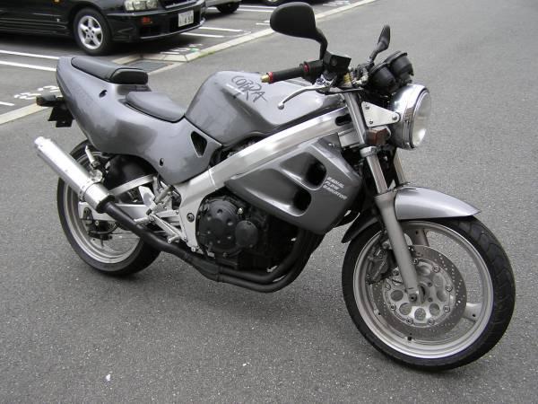 Suzuki GSX-S 250 Cobra