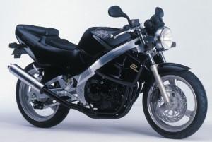 Suzuki GSX-S 250 Cobra - ENOANDERSON.COM