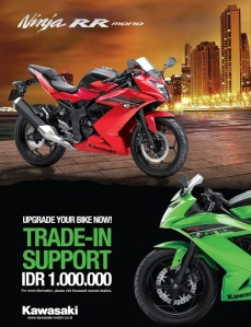 Kawasaki Ninja 250 RR Mono Trade In